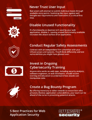 web-app-security-5-best-Practices_offensive-security
